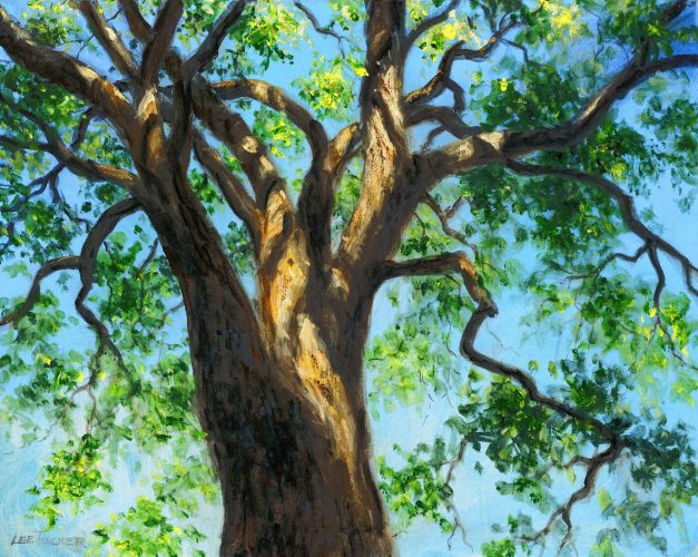 """The Tree Above""<br>giclee painting hand embellished by the artist on streched canvas <br> 24""x30"", $1200.00 ,S/H $45.00"