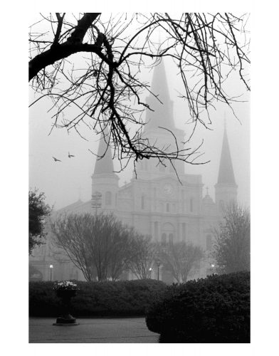 "St. Louis Cathedral<br>limited edition photo,signed and numbered<br>$110.00, 16' x 20"" $165.00"